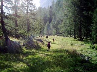 Karnische-Alpen-Val-Fleons