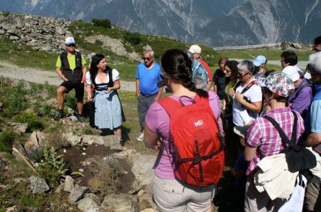 Alpen Kräuterheilgarten Venet