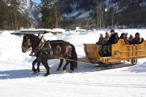 Pferdeschlittenfahrt-Gosau-Foto-Grill-Elisabeth (2)