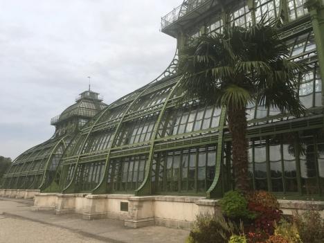 Palmenhaus_Schönbrunn